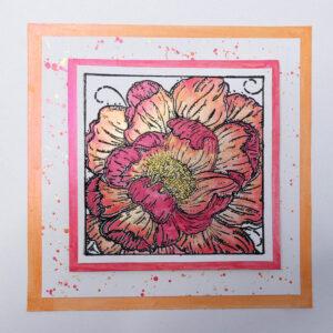 IndigoBlu Colour Me Camellia IND0748