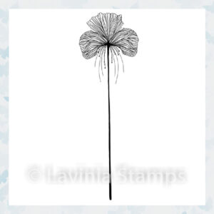 Lavinia Clear Stamp Single Fairy Orchid LAV548