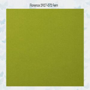 Florence Cardstock Glad 2927-072 Fern A4/10 Vellen/216gr