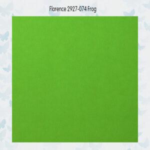 Florence Cardstock Glad 2927-074 Frog A4/10 Vellen/216gr