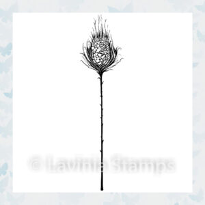 Lavinia Clear Stamp Star Burst LAV544
