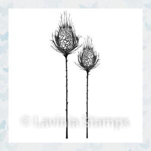 Lavinia Clear Stamp Star Burst Set LAV545
