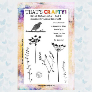 That's Crafty! Clearstamp A5 - Dried Botanicals Set 2 - 10847