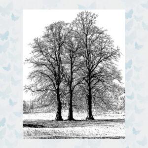 Crafty Individuals Tree Trio Unmounted Rubber Stamp (CI-453)