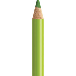 Faber Castell Polychromos 170 May Green