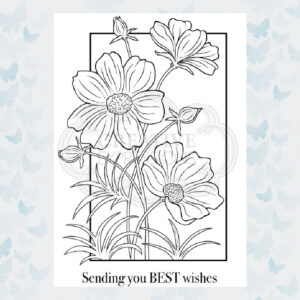 Creative Expressions Woodware Clear stamp set Cosmos Collection JGS708