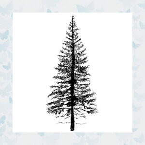 Lavinia Clear Stamp Fir Tree 1 LAV094
