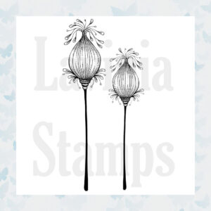 Lavinia Clear Stamp Fairy Pods LAV350