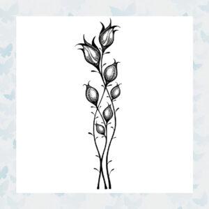 Lavinia Clear Stamp Star Blossom LAV467
