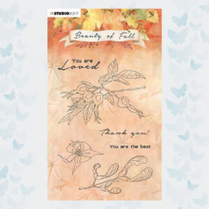 Studio Light Clear Stamp Beauty of Fall nr.64 SL-BF-STAMP64