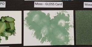 Ranger Alcohol Ink - Moss TAL70221