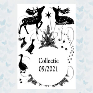 Card-io Clear Stamps Evergreen Encounter